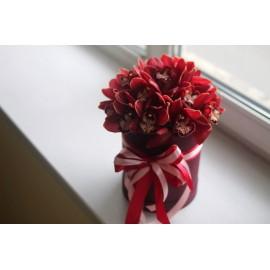 Гранатовые орхидеи в коробке
