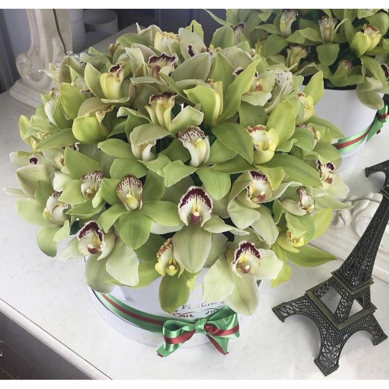 Коробка с зелёными орхидеями