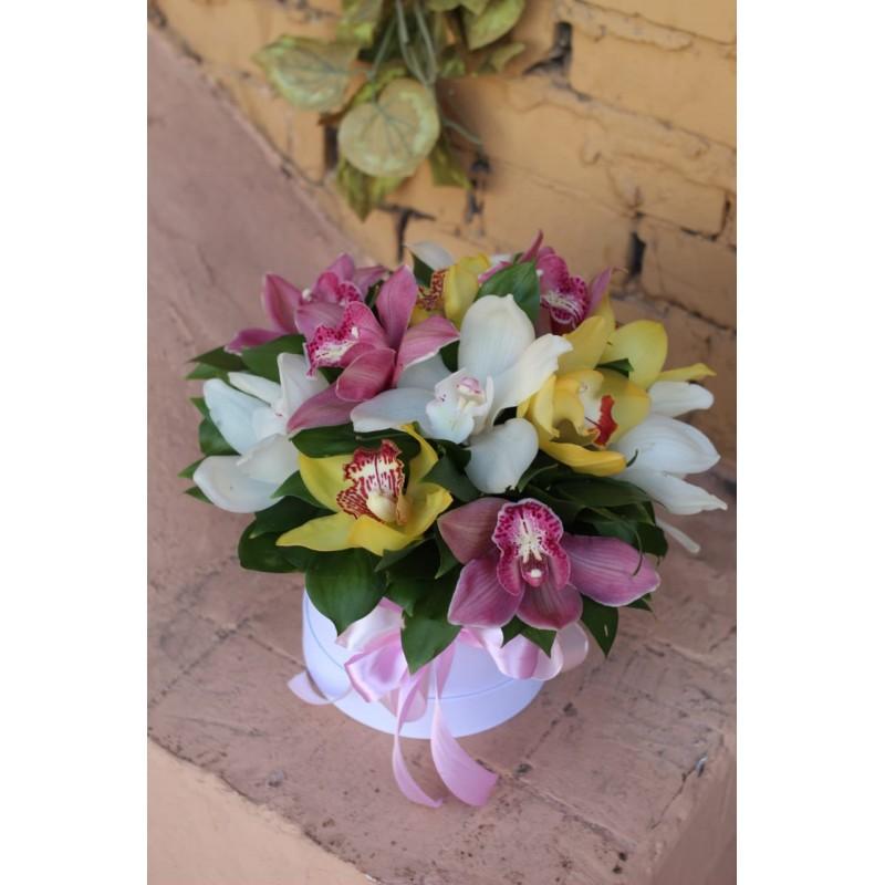15 орхидей в коробке