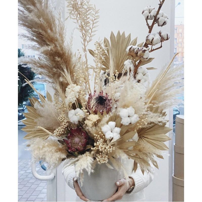 Зимние сухоцветы