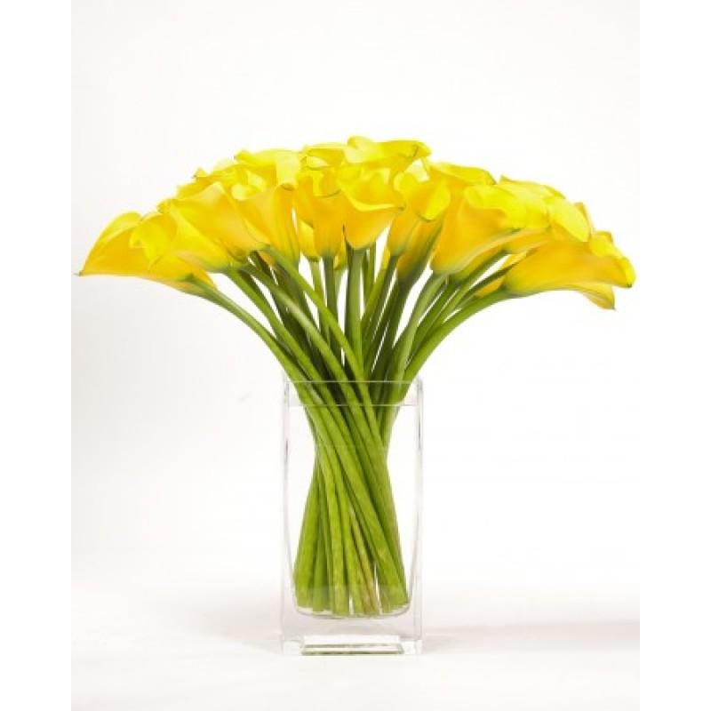 51 желтая калла в вазе