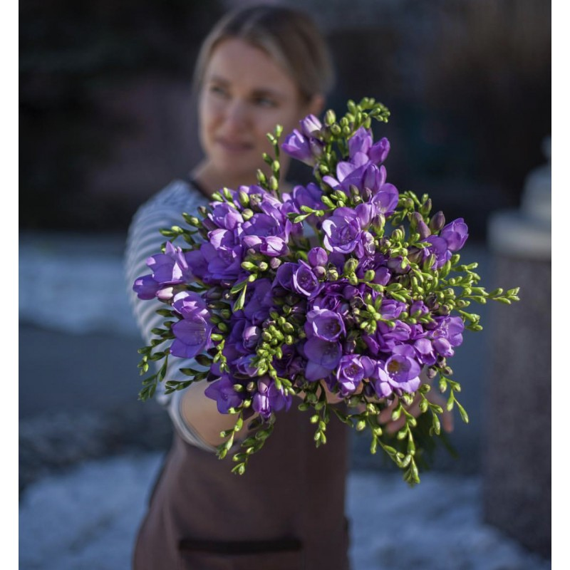 Фиолетовые красавицы