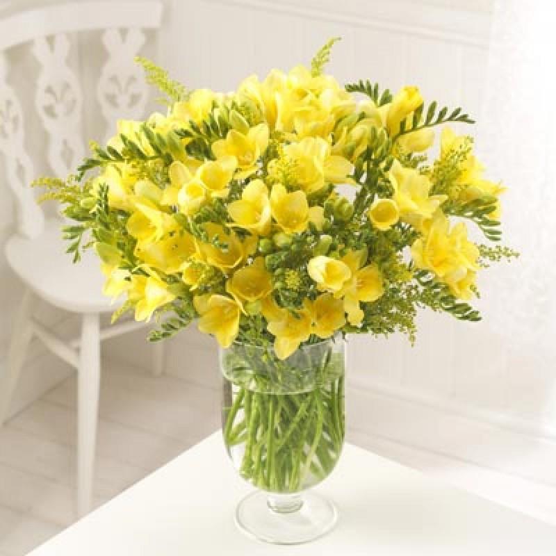 39 желтых фрезий в вазе