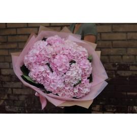 Облако из 15 розовых гортензий