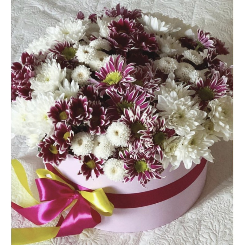 25 хризантем в коробке