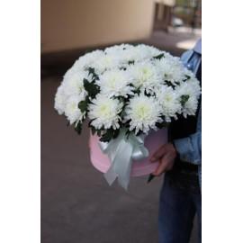 Белые хризантемы в коробке