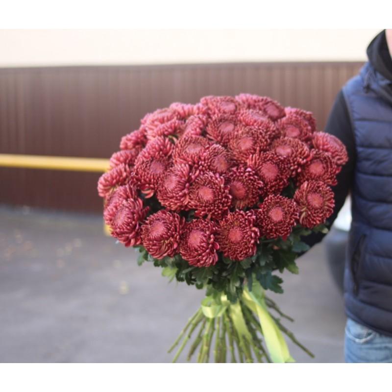 Хризантемы Бигуди поштучно от 9 штук