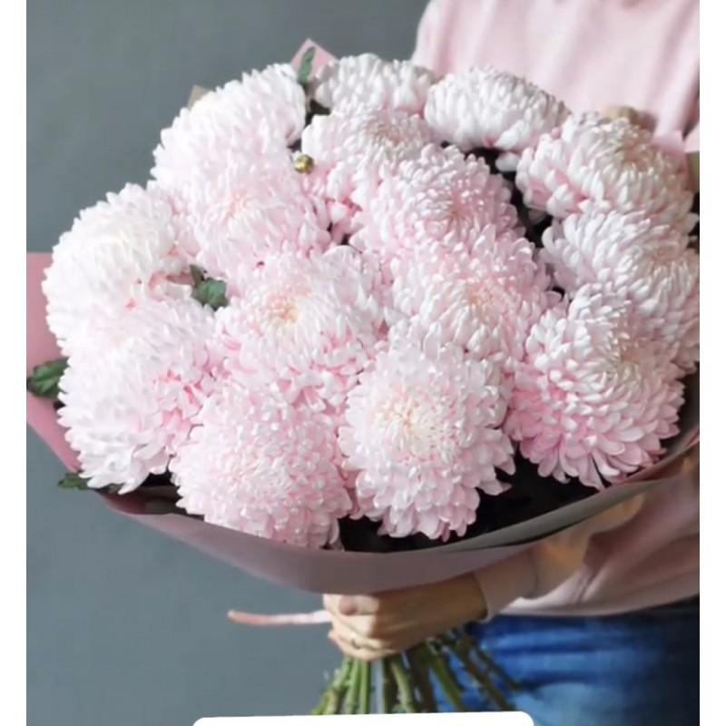 Розовые пампушки