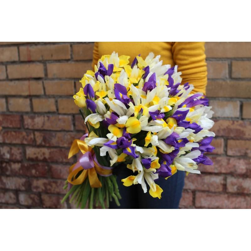 Желто-фиолетовые ирисы