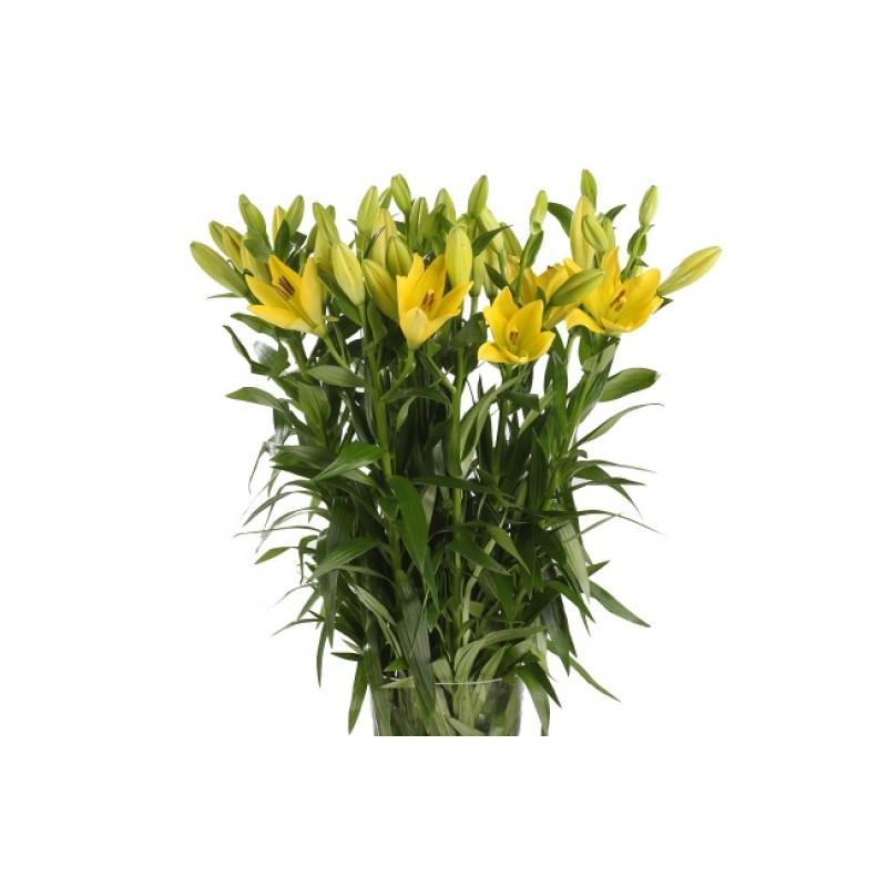 9 желтых лилий в вазе