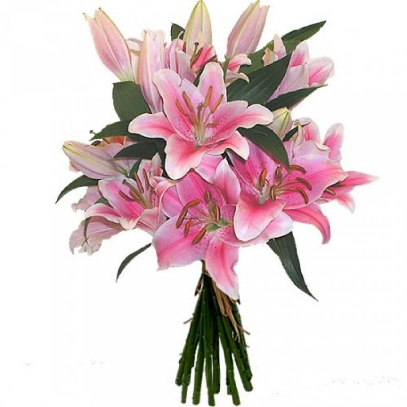 9 розовых лилий