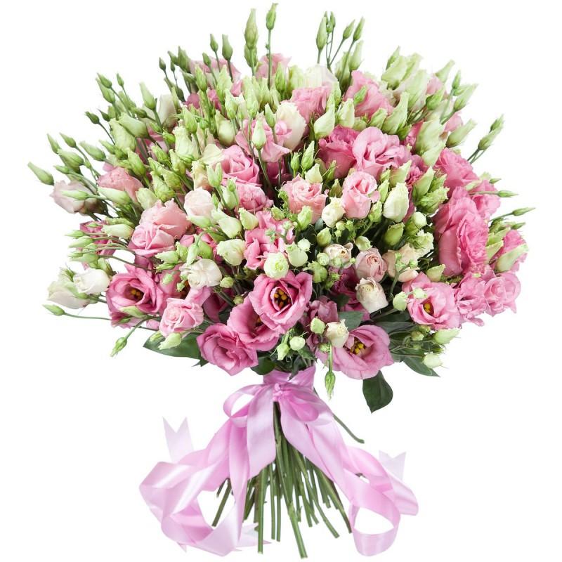 Розовые лизиантусы