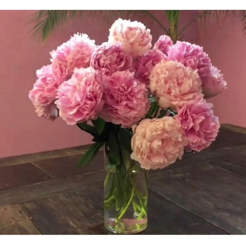 11 розовых пионов в вазе