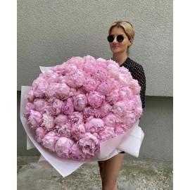Акция на ароматные розовые пионы!