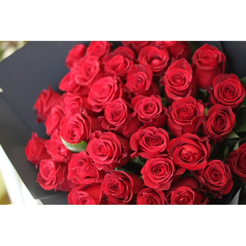 Красные розы Эксплорер высота 60 см от 19 штук