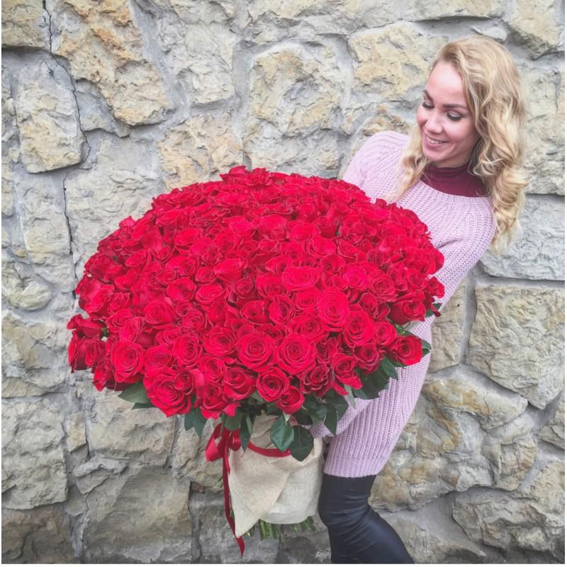 201 красная роза (Эквадор)