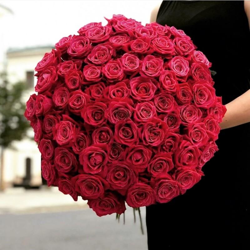 101 малиновая роза высота 60 см
