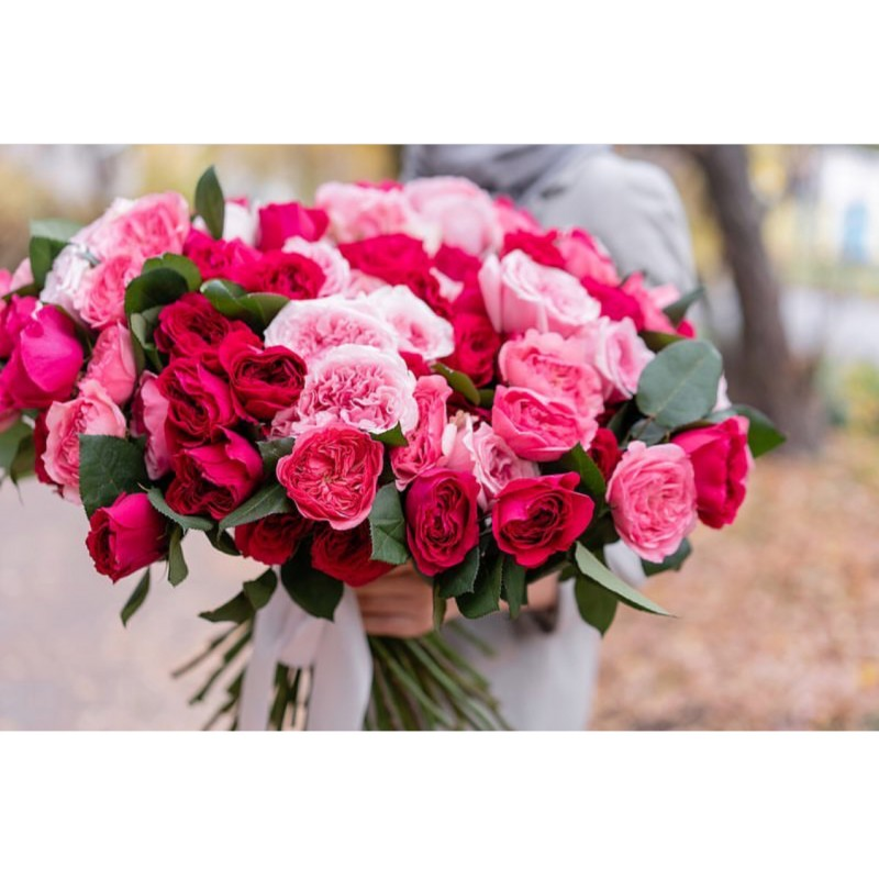 101 роза Дэвида Остина
