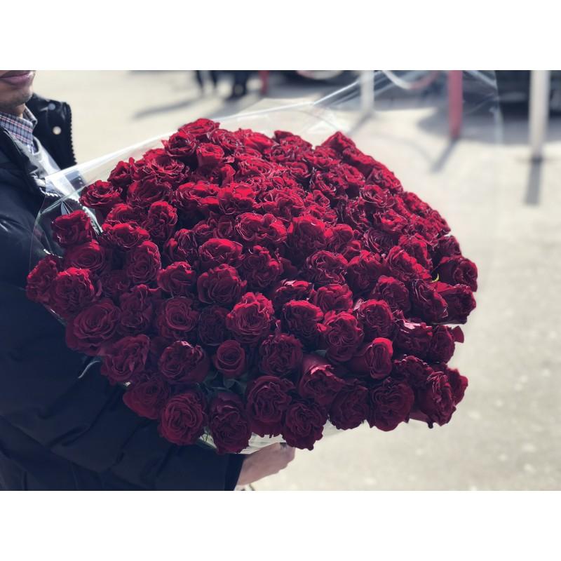 101 красная роза Hearts