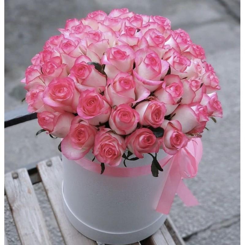 51 розовая роза Джамиля в коробке
