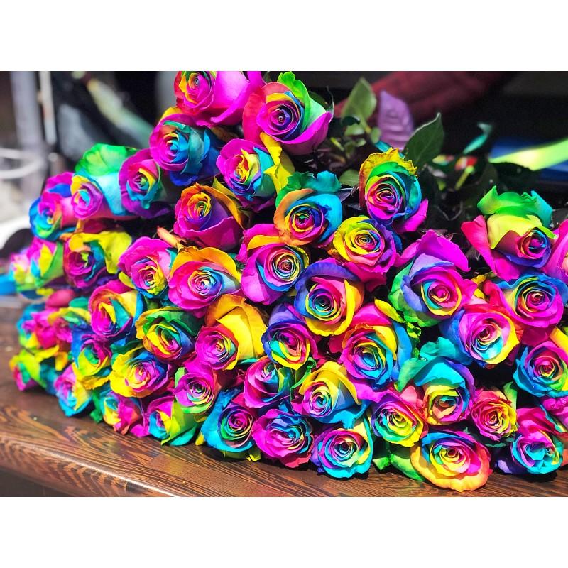51 радужная роза Эквадор высота 80 см