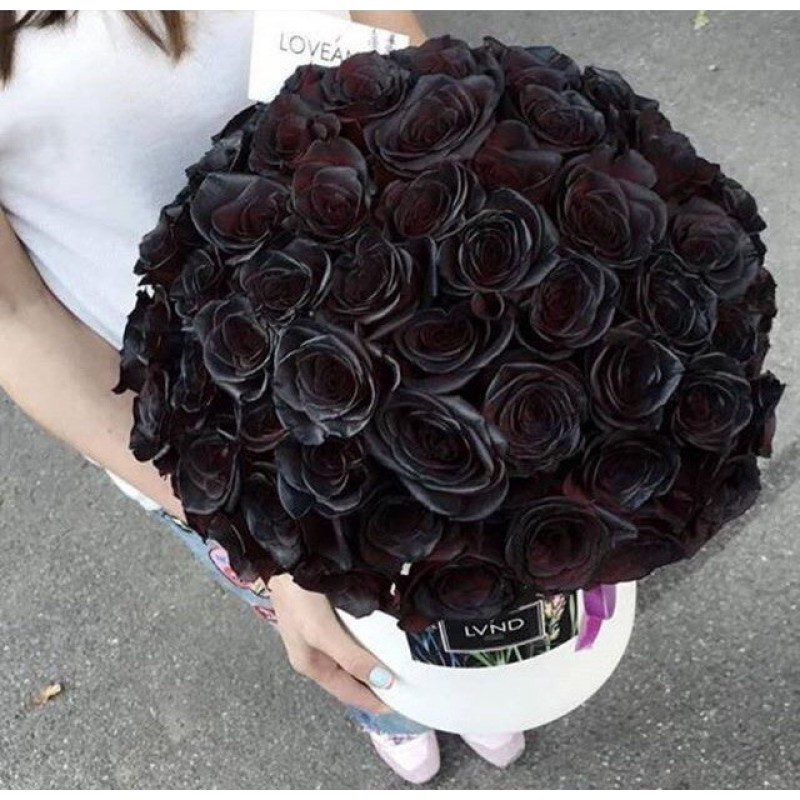 51 черная роза в коробке