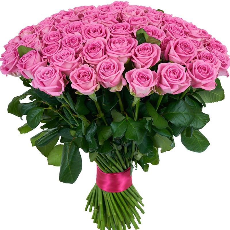 101 розовая роза высотой 60 см.