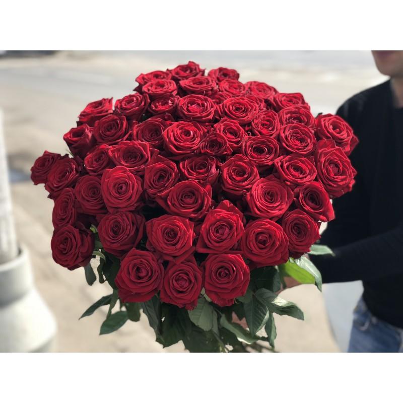 51 красная роза высотой 70 см