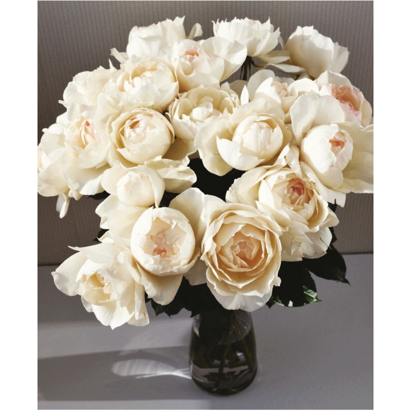 Розы Крим Пьяже
