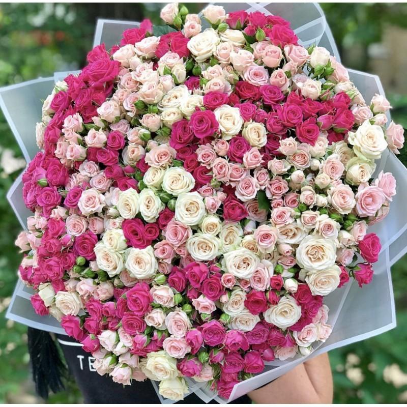 101 кустовая роза высотой 60 см.