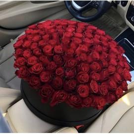 101 красная роза в чёрной коробке
