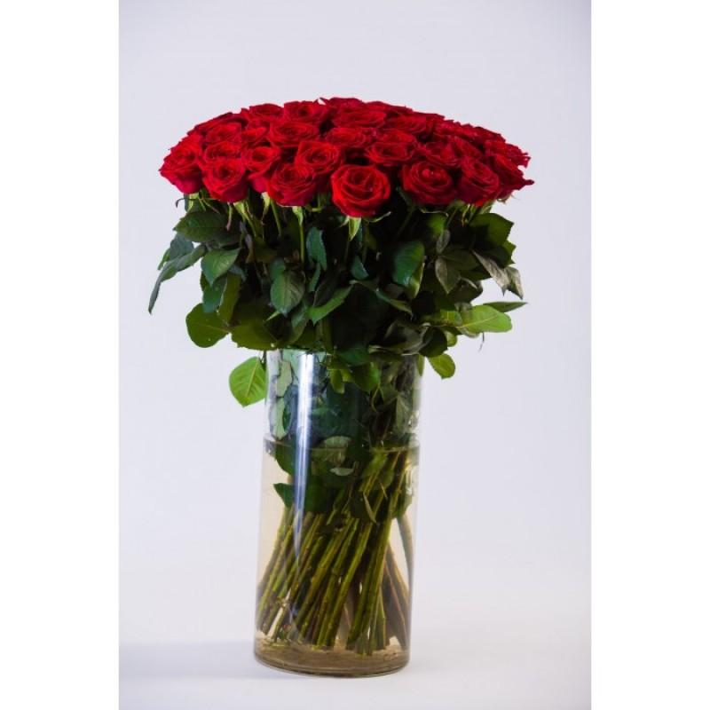 35 красных роз высотой 100 см., в вазе