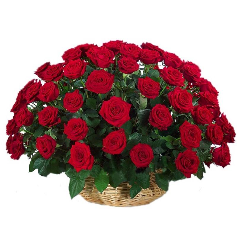 Розы с поздравлениями с юбилеем