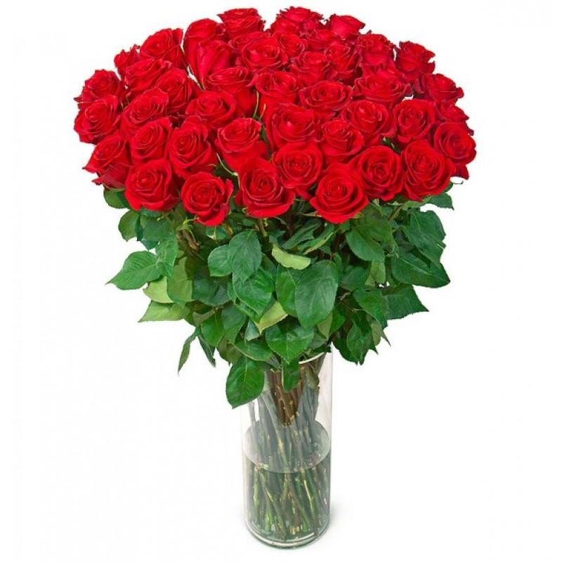 Розы 140 см., поштучно