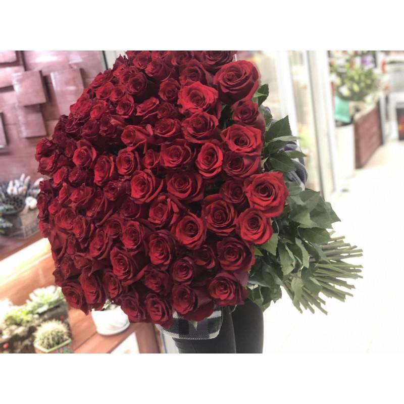 101 красная роза 90 см Эквадор