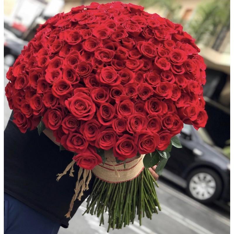 201 красная роза Фридом 70 см.