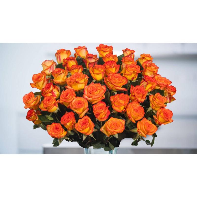 75 оранжевых роз