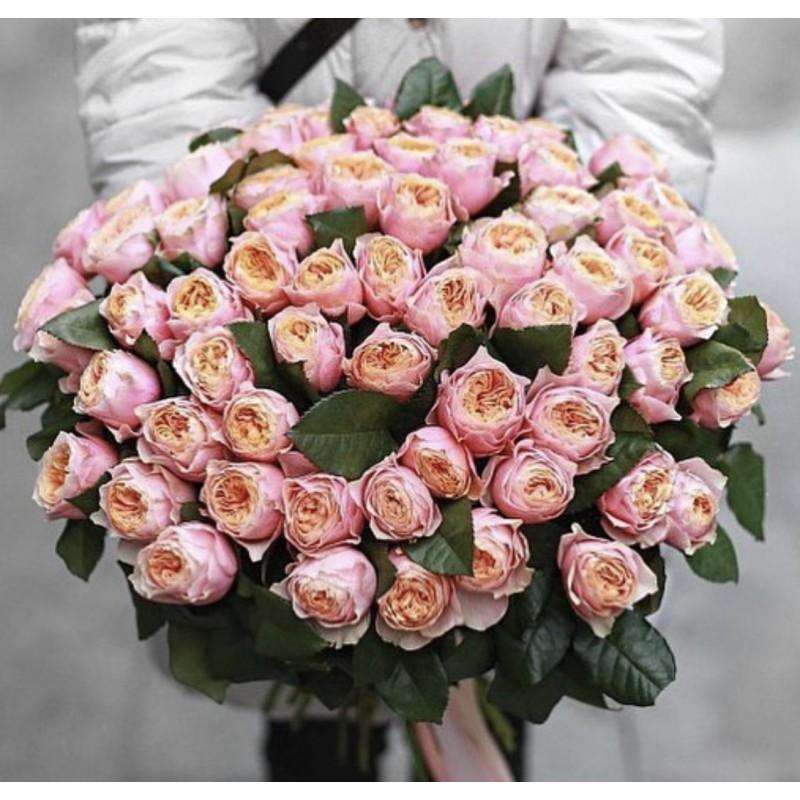 101 роза сорта Вувузела
