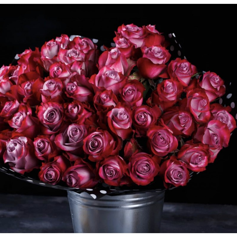 75 роз сорта Муди  в ведре