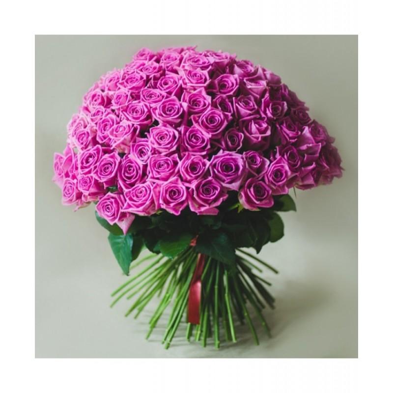 75 розовых роз сорта Аква