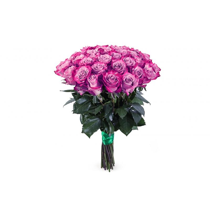 45 роз сорта Муди Блю