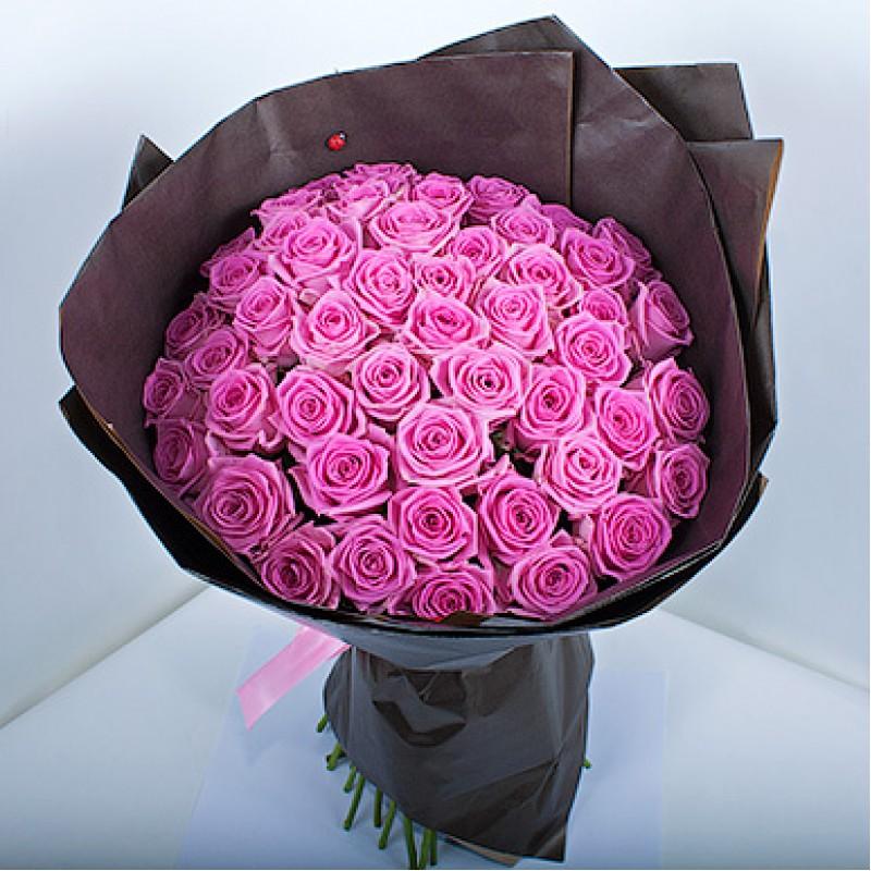51 розовая роза сорта Аква