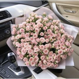 51 кустовая роза высотой 60 см.
