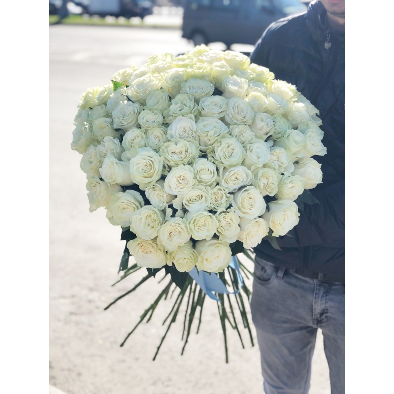 75 белых роз высотой 90 см.