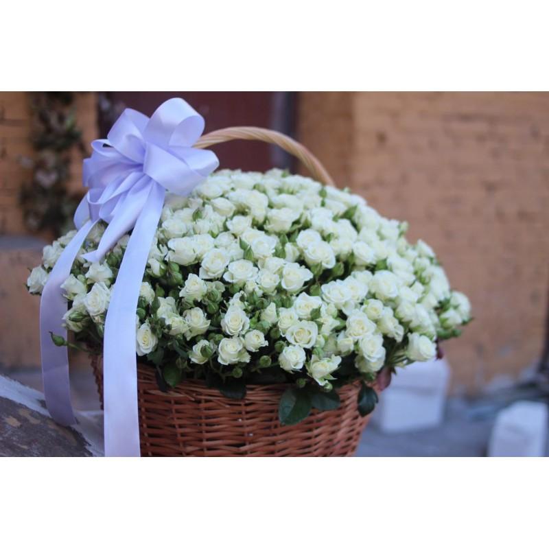 Корзина из 101 белой кустовой розы