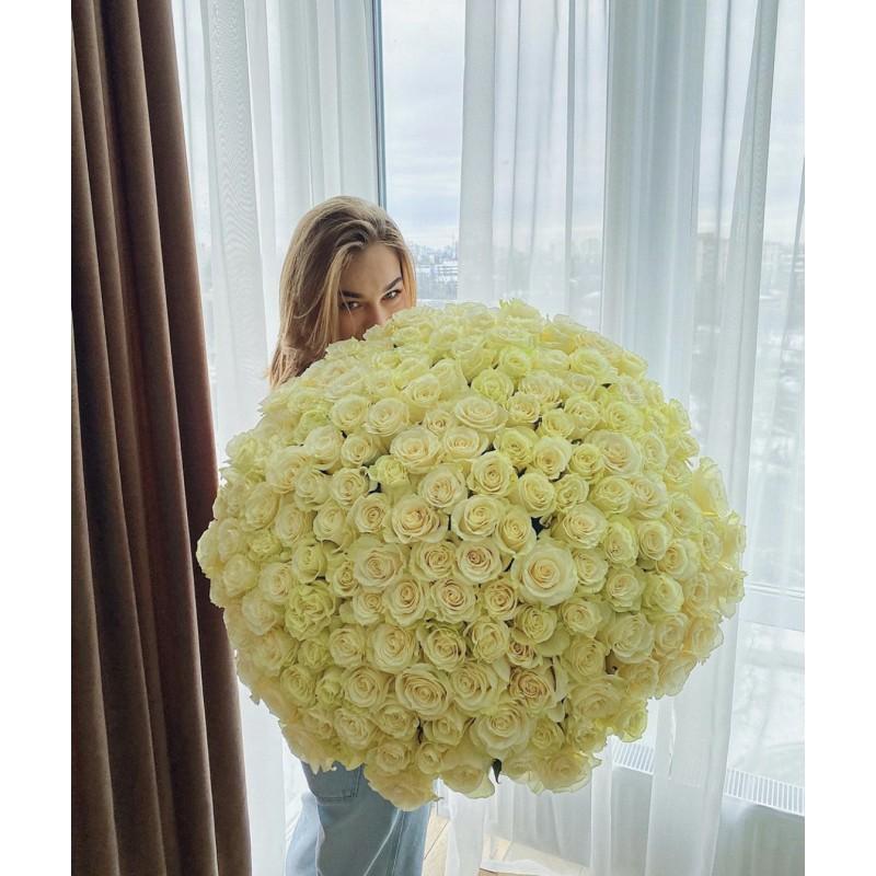 101 белая роза Мундеаль 80 см.