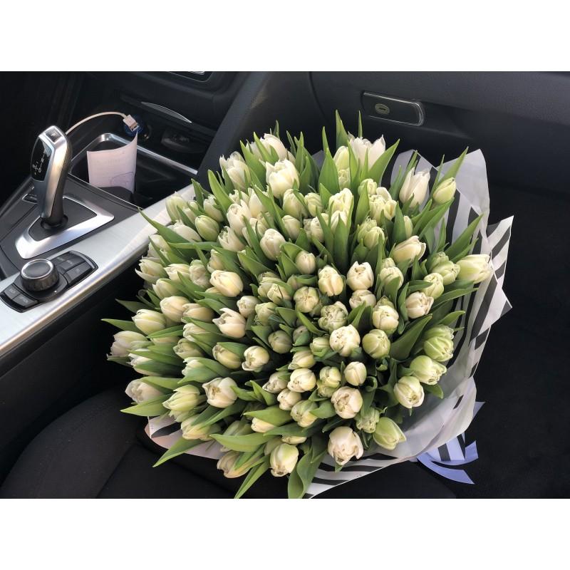 101 пионовидный тюльпан сорта Мундеаль