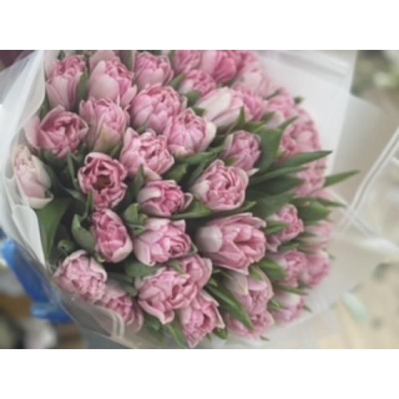 Розовые пионовидные тюльпаны Факстрот
