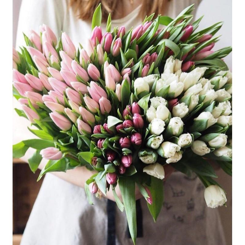 Облако нежных тюльпанов