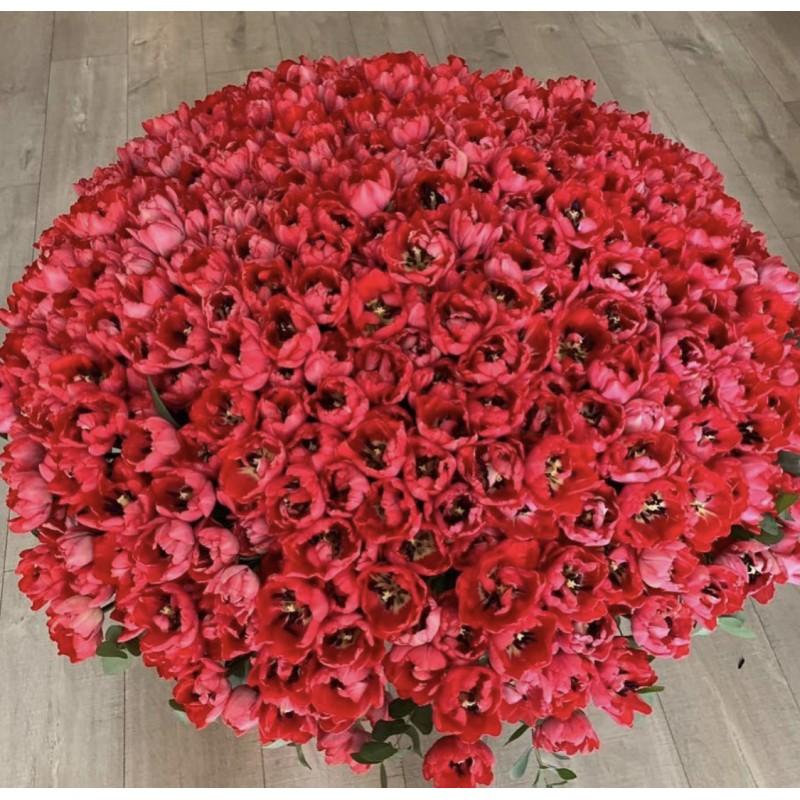 Корзина из 501 тюльпана